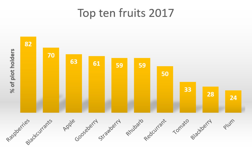Graph showing top ten fruit for 2017