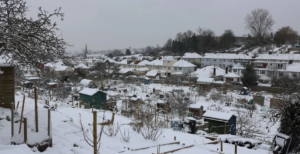 Overview of Birchall Road allotments in snow 20189