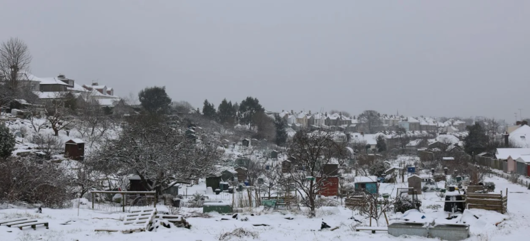 Panorama of Birchall Road allotments in snow 2018