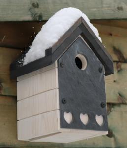 Birdbox on Birchall Road allotments 2018