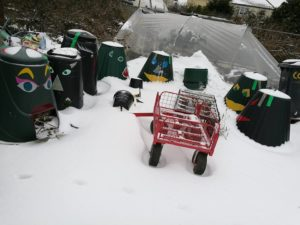 Compost bins on allotment in the snow