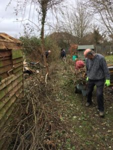 Hedgelaying work party