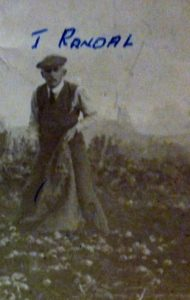 James Randall digging potatoes circa 1921