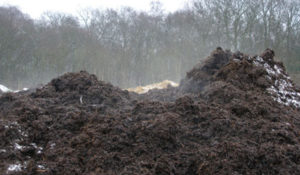 Adding manure and compost to your allotment