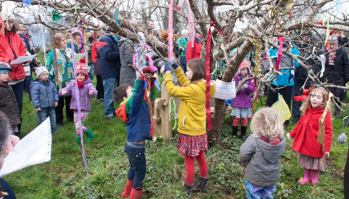 Wassail at Horfield Organic Community Orchard in 2016