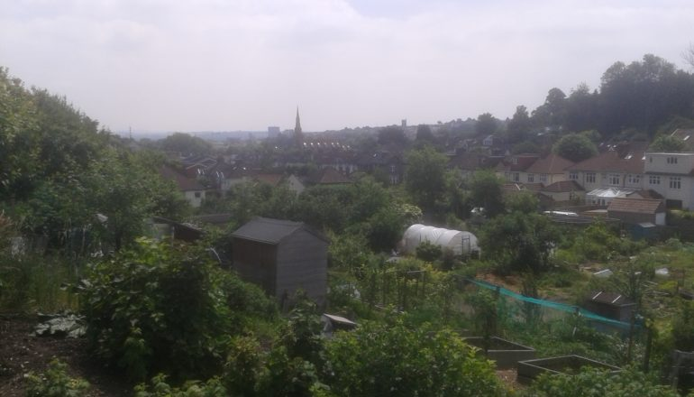Birchall Road allotments panorama towards Bristol centre