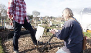 Caring for Trees courses