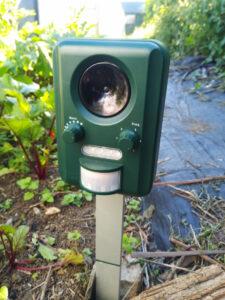 Ultrasound device fotr deterring badgers